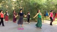 紫竹院广场舞——爱的部落(带歌词字幕)