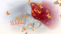 A1040 蝴蝶飞舞温馨浪漫婚礼片头开场视频AE模板
