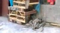 西安玩具批发市场小游