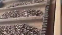 什么才叫颗粒,这才叫颗粒。达摩制造的纯红木颗粒燃料,热值高达6000大卡,月产6000吨,百分百保证不结焦,实力厂家值得信赖值得选择!