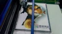 视频: 3D纺织彩印机 恒诚伟业白经理 QQ:3094283376