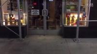 丧心病狂,纽约老鼠见猫被关在玻璃门内,主动前去挑衅。。。