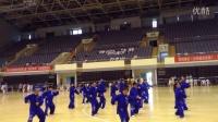 2015年苏州市''体育彩票''杯第七届''假日体育''活动28式陈式太极拳