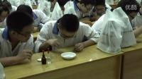 2015四川优质课《低温诱导植物染色体数目的变化》人教版高一生物,四川省成都市第八中学:祝琳娜