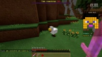 【小枫的Minecraft直播精华】机智的躲猫猫,请叫我作死之王!