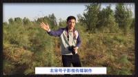 《中国好声音》鸟巢总决赛《爱拼才会赢》