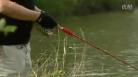 野钓蚯蚓钓鱼视频_黑坑钓鲤鱼怎么调漂_海竿钓鲢鳙