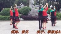 广场舞  < 兔子舞 > 双人舞18步