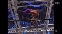 WWE地狱牢笼大战十大灾难性时刻