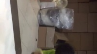 巴厘岛真空包装乳胶枕