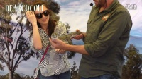 Vlog ~ 澳大利亚黄金海岸之旅!