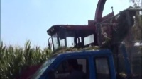 宁联穗茎兼收玉米收割机作业现场