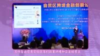 自贸区跨境金融创新论坛与跨境金融的必要性 151022