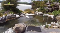 Polynesian Spa 罗托鲁瓦的温泉哪家最好