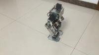 17轴人形机器人-淘宝