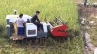 视频: 履带式自走收割机 西南独家 招商QQ466788760