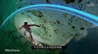 CHINESE_Marine Pollution 2015 rev FINAL_subt