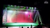 全国钢管舞钢管舞锦标赛龙华华翎代表比赛视频迅雷下载