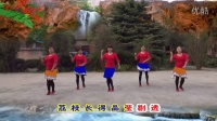 子青广场舞 爱情火龙果 原创美久 摄制小草林 合肥市槐林港口路健身队