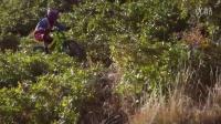 视频: 14岁的歪国骚年-GT山地车