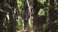 视频: 山地自行車