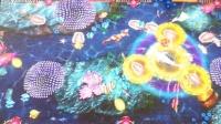 视频: 渔乐至尊99炮游戏机视频_昌盛游戏机