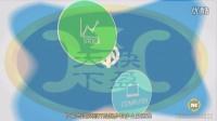 视频: 金德微交易招商加盟代理咨询开户