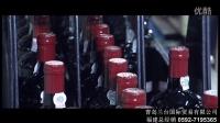 视频: 葡萄牙豪门波特红酒福建总代理