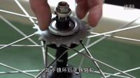 视频: [派斯乐]死飞如何更换链轮-GCN Campagnolo 保养系列