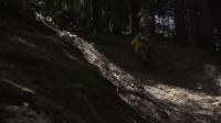 视频: 年轻速降骑手的狂!职业极限摄影的野!FINN ILES - Morzine