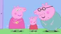 090 猪宝宝