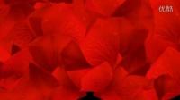 玫瑰花瓣洒落婚礼动态效果3Td013108