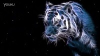 豹子雪豹动物素材-蚁窝网 视频素材免费下载