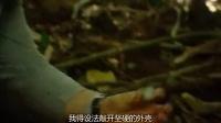 视频: 荒野求生 第一季 5 基拉韦厄火山
