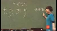 落花生-五年级语文上册_郝玲-参赛课