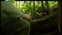 视频: 《荒野求生》基拉韦厄火山 荒野求生秘技2013 贝尔格里尔斯