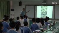 小学五年级美术《马年说马》教学视频,深圳新媒体应用大赛获奖视频