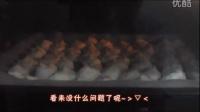 【喵桑】现学现卖烘焙实况之椰蓉蛋白饼&蛋黄小饼篇