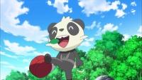 第46话 莎莉娜首次收服 顽皮熊猫VS火狐狸