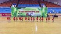 浙江省第四届健身排舞大赛总决赛《空中漫步》获得一等奖