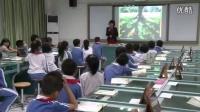 小学语文二年级《要是你在野外迷了路》教学视频,深圳新媒体应用大赛获奖视频