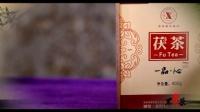 安化黑茶枣庄地区总代