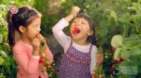 韩国食品创意短片果园儿童3Te010173