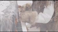 美国钢琴师Sonya Belousova演绎《权利的游戏》主题曲