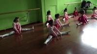 中国舞蹈家协会中国舞蹈考级三级 三字经新授课 松江谷阳北路中山二路近月厦新天地松乐路160号lily舞蹈57765720