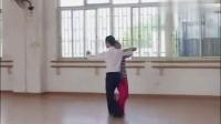 交谊舞视频精选