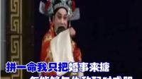 《四郎探母》杨彦辉在辽宫把娘来想---伴奏