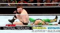 WWE NXT2016年1月21日RAW NXT系列 精彩瞬间【超清中文