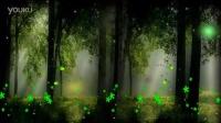 D69梦幻森林气泡小鸟花朵《有音乐》