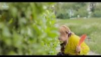 视频: 越南歌曲 Tình Lúa Duyên Trăng稻子爱月缘-Huỳnh Nguyễn Công Bằng黄阮公平Dương Hồng Loan杨红鸾